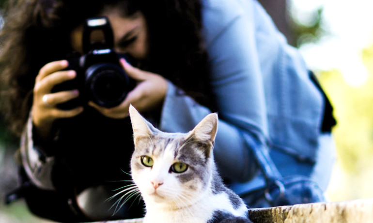 """""""Even if you have the best cat picture ever, it could work for your network, but not for my boring academic friends,"""" says Jure Leskovec. """"You have to understand your network."""" (Credit: Matteo/Flickr)"""