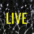 With these tools scientists can study how we learn, remember, navigate, or any other activity that requires networks of nerves working together. The tools can also help scientists understand what happens when those processes don't work properly, as in Alzheimer's or Parkinson's diseases, or other disorders of the brain. (Credit: Henry Bucklow/Flickr)