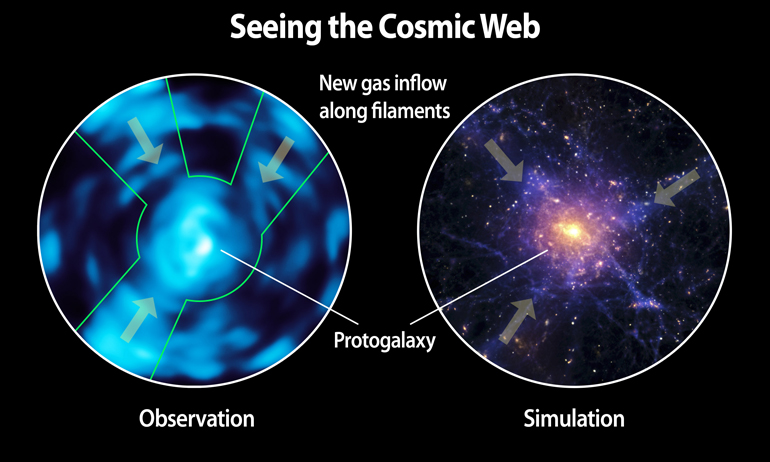Comparison of Lyman alpha blob observed with Cosmic Web Imager and a simulation of the cosmic web based on theoretical predictions. (Credit: Christopher Martin, Robert Hurt)