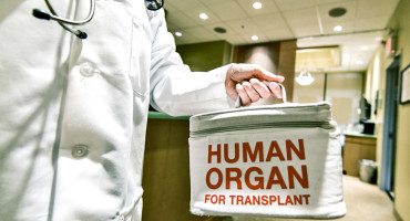 Low standardized transplant ratios (STRs) are associated with for-profit status of dialysis facilities, facilities with a higher percentage of African-American patients, patients with no health insurance, and patients with diabetes. Higher STR is associated with more facility staff members, more area transplant centers, a higher percentage of employed patients. (Credit: iStockphoto)