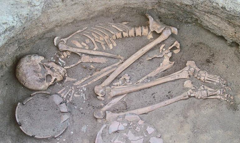 prehistoric human remains