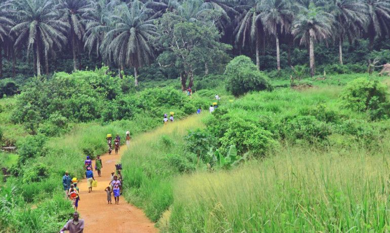 Road from Kenema to the Kailahun District in Sierra Leone