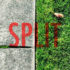 the word split on grass and cement