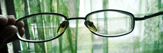 eyeglasses in front of green curtains