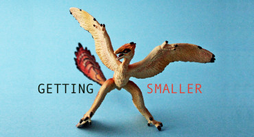 "toy microraptor says ""getting smaller"""
