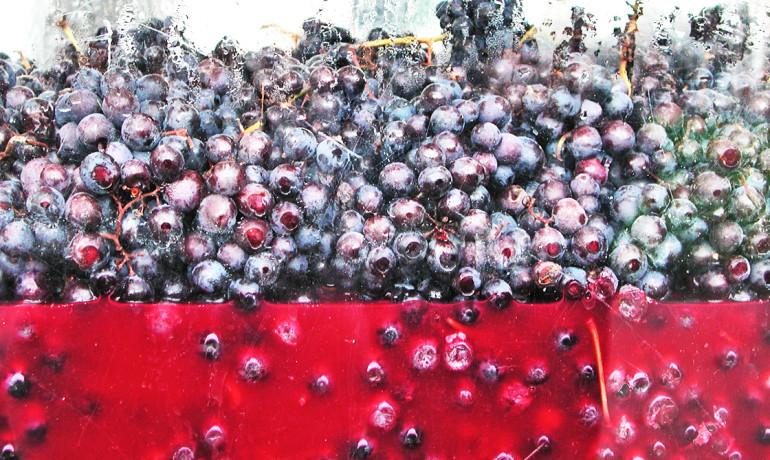 wine grapes in a glass vessel