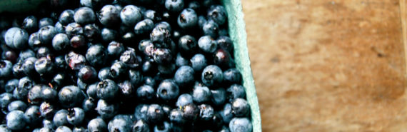 blueberries (fruit and vegetables)