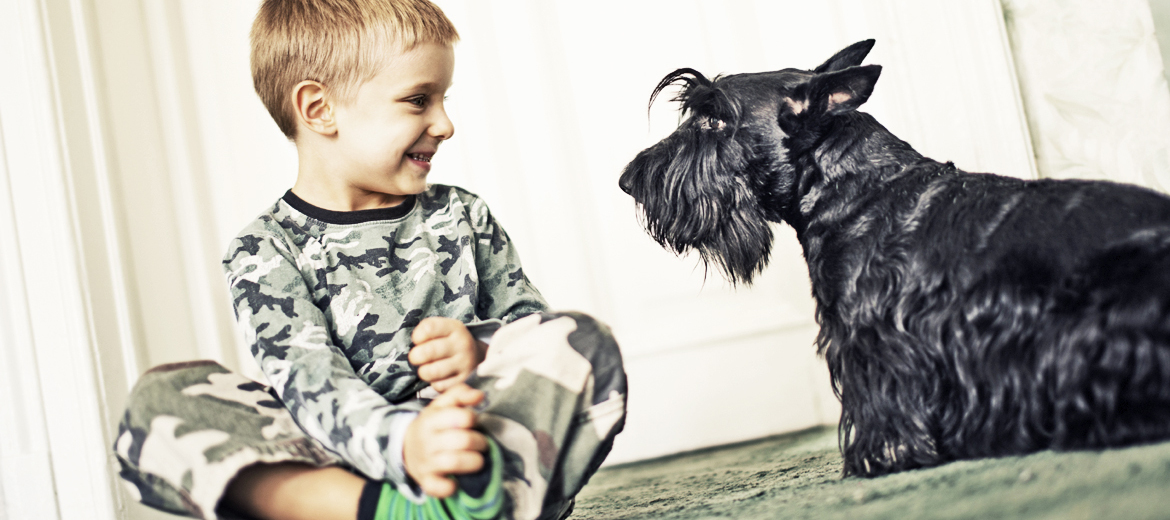 boy wearing camo with schnauzer
