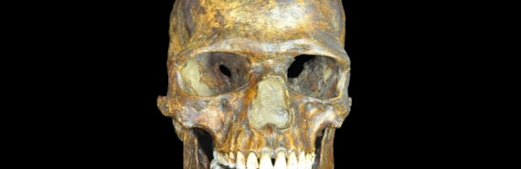 Kostenski skull