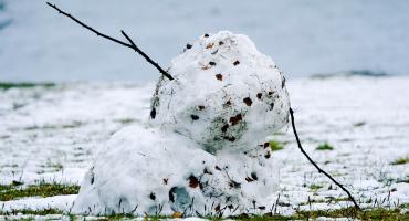 did global warming kill this snowman?