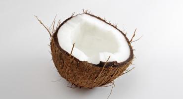 coconut split in half