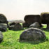 boulders on grass