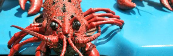 lobster sculpture