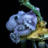 octopus on undersea drillhead