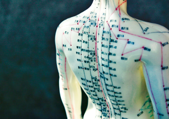 acupuncture doll's back