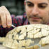 Jason Bourque reconstructs the 56-million-year-old shell of a turtle