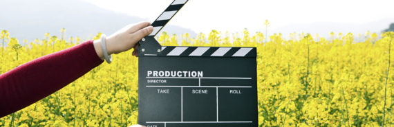 movie clapper board and yellow flowers