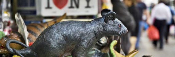 plastic rat toy for sale in Chinatown