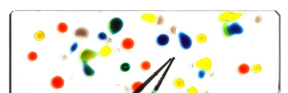 droplets on glass slide