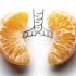 lung concept made of oranges
