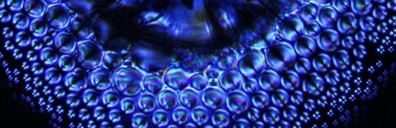 blue microlenses