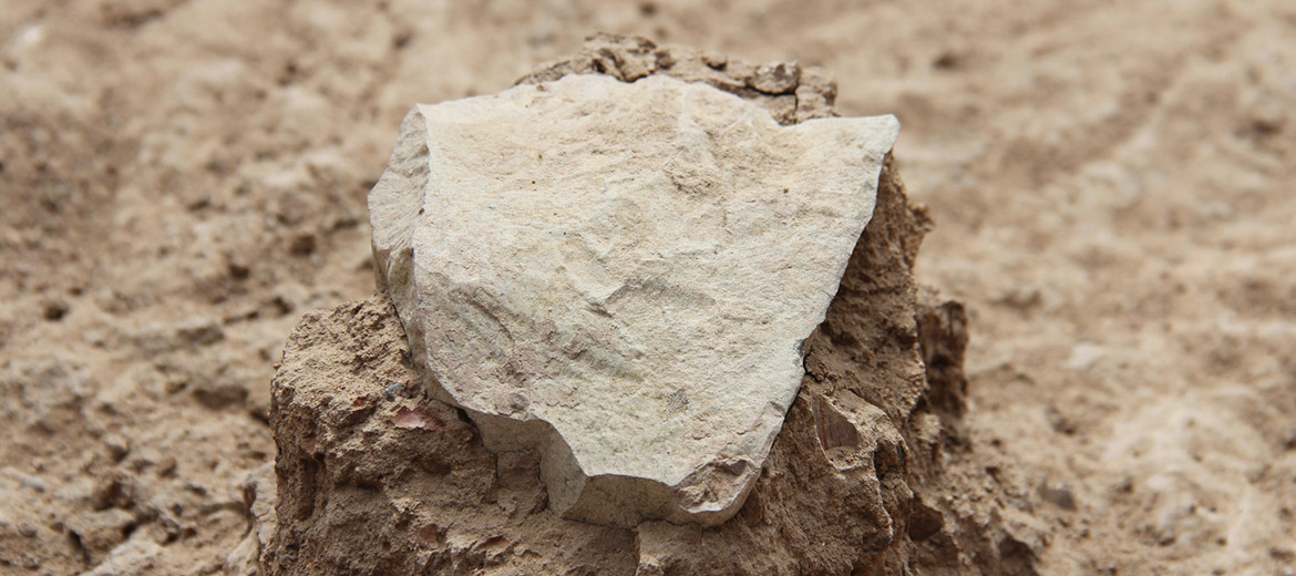 stone tool at the Lomekwi 3 site