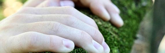 hands grip mossy beam