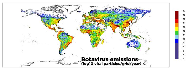 rotavirus map
