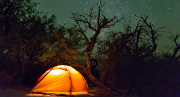 orange tent in dark woods