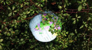 earth in pricker branchers