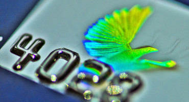hologram bird on credit card