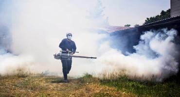 spraying for dengue fever