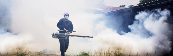 spraying for dengue fever