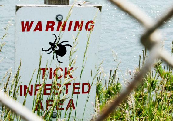tick sign to prevent lyme disease