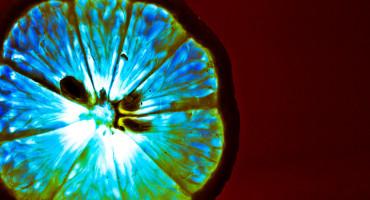 blue light through lemon slice
