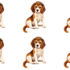 repeating images of dogs