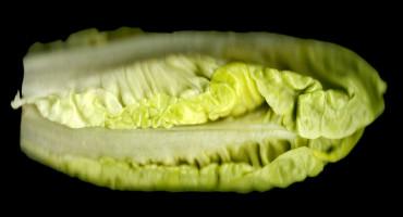 romaine lettuce on black