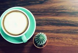 coffee drink & cactus on wood