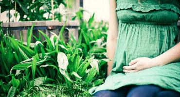 pregnant woman in garden