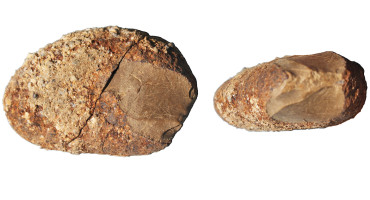 pebble tool from Monte Verde