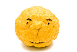 lemon has angry man's face