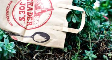 trader joe's bag and plants