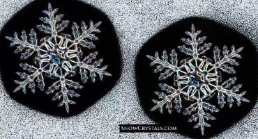 twin snowflakes