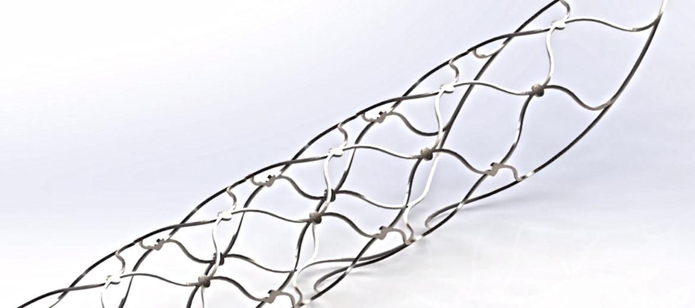 stentrobe implant