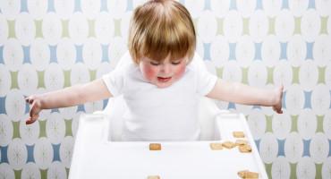 toddler considers cookies