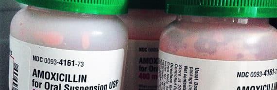 bottles of amoxicillan