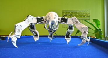 3D-printed robot