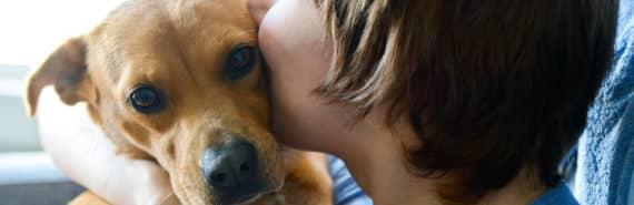 person kisses a dog