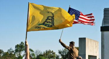 Gadsden & US flags - tea party
