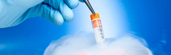 cryopreservation for embryos